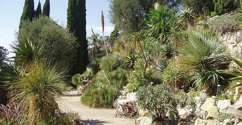 Botanische tuinen van Hanbury bloemenriviera